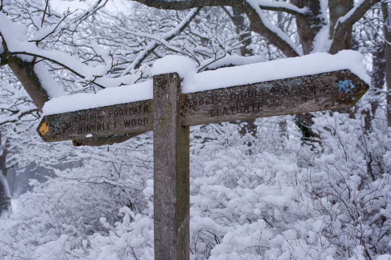Snowy Sign Post