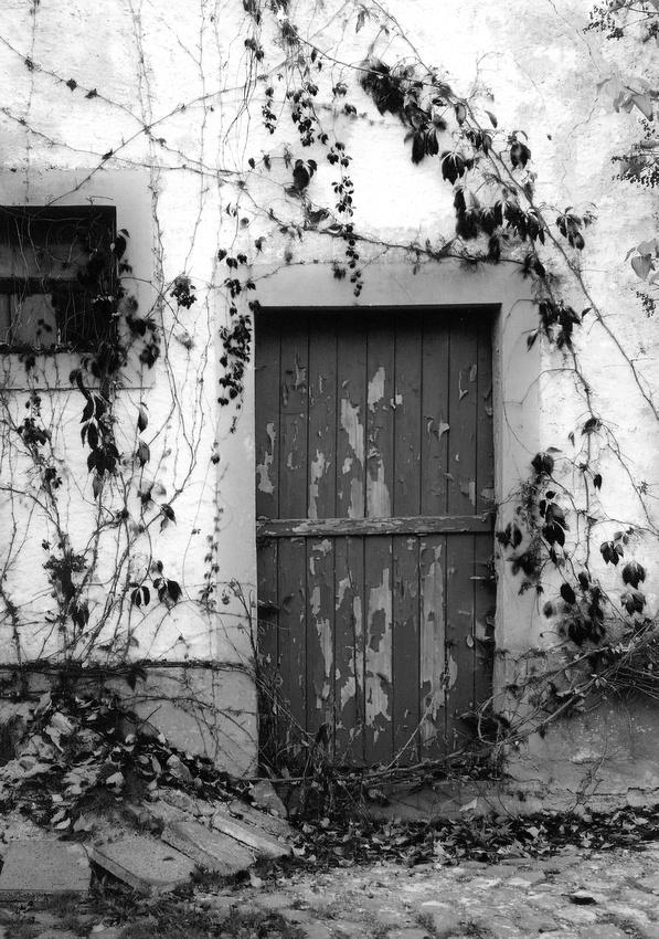 Blue Door, Germany