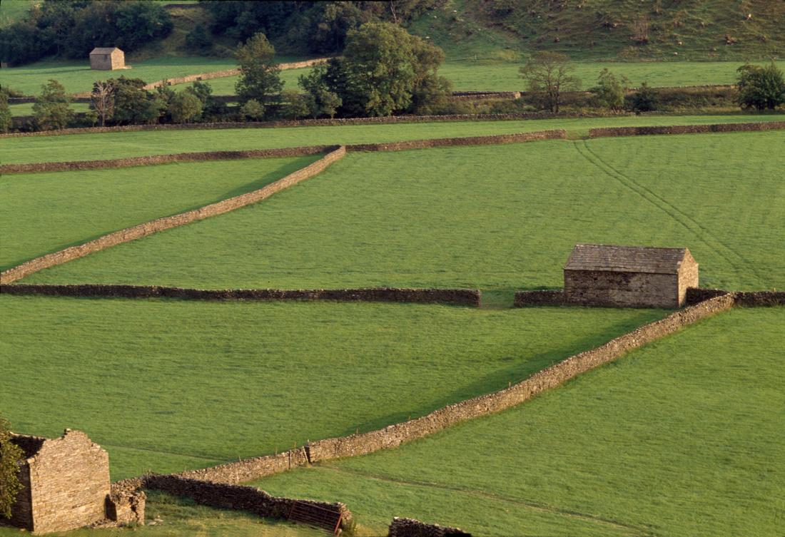 Limestone barns in Birkdale, Swaledale, Yorkshire