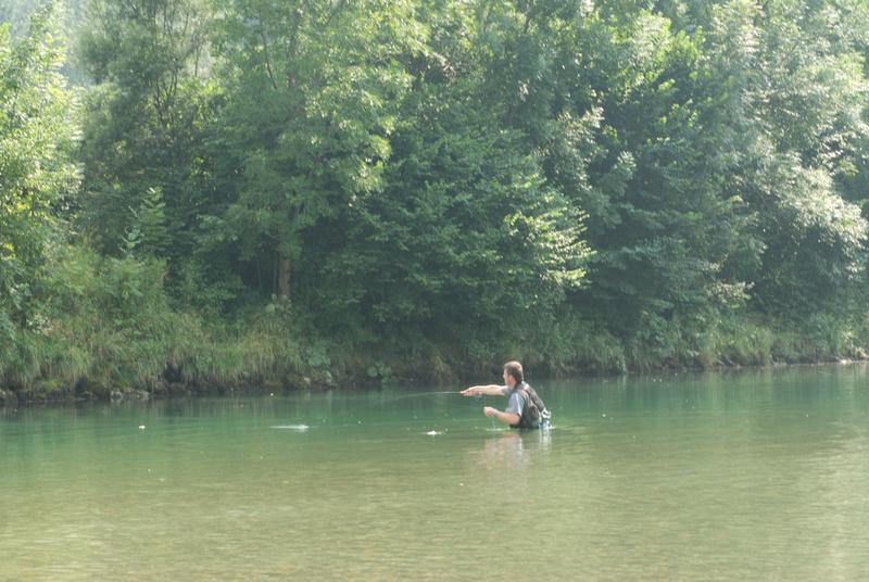 Sava Bohinjka fly fishing
